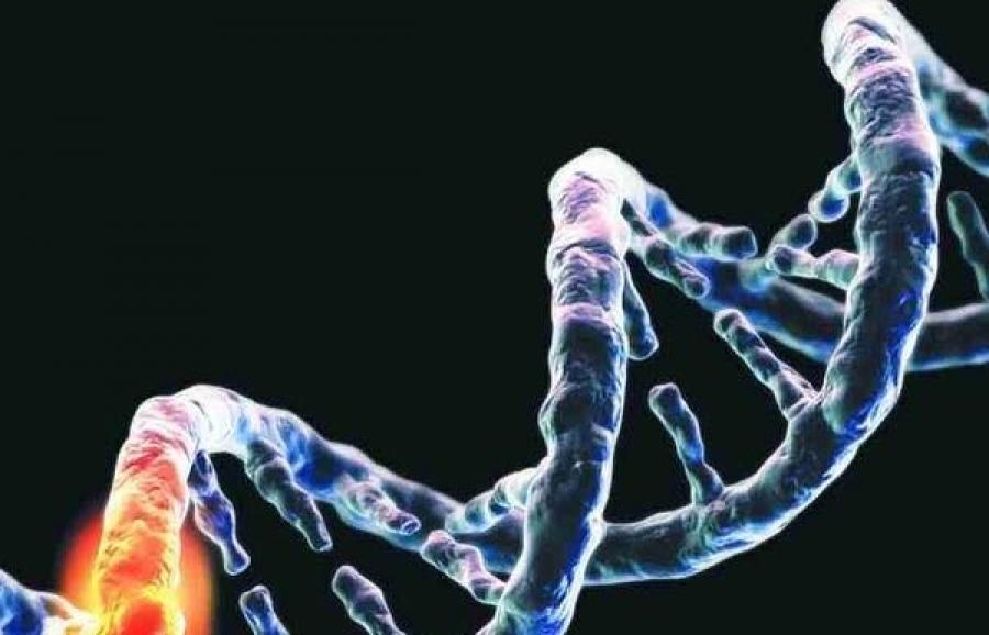 Российские учёные открыли редкую мутацию, разрушающую органы детей